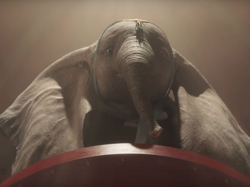 Watch Dumbo at VOX Cinemas Dubai and across the Middle East